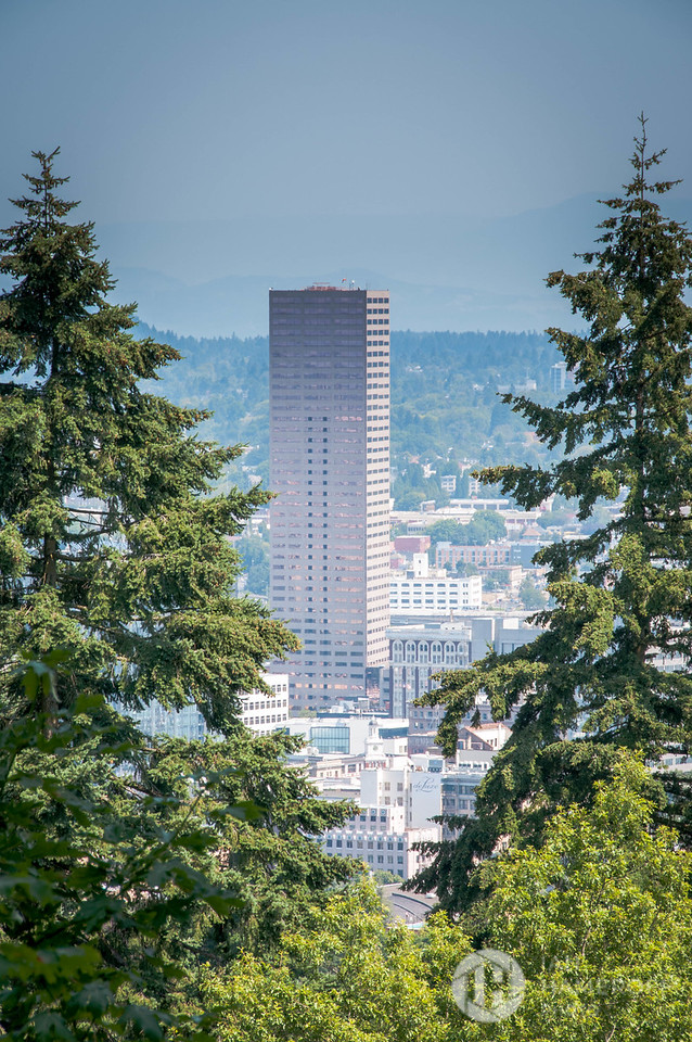 Portland from the Park