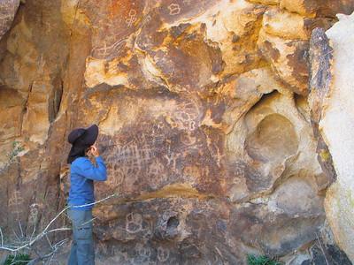 Petroglyphs at Painted Rock