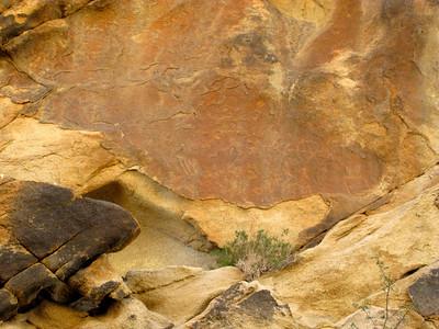 Petroglyphs at Panted Rock