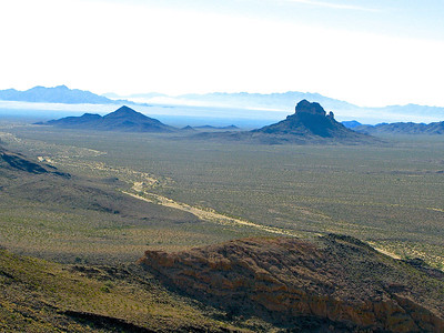 Monuments of Vidal Valley