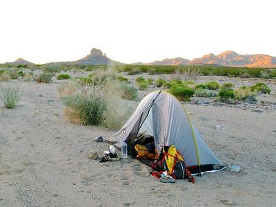 Single layer tent