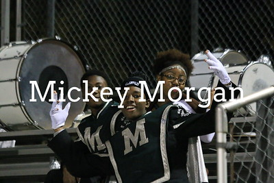MHS Spirit Groups and fans 11-7-2014-15