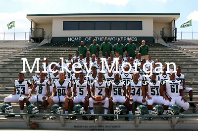 MHS Wolverines Team Pictures 2014-15