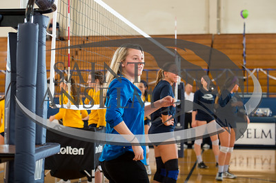 Volleyball Senior Day vs. Pace (11/8/14) Courtesy Jim Stankiewicz