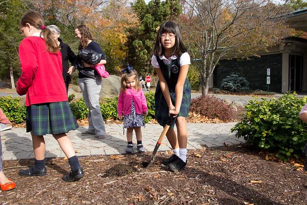 Preschool and Second Grade Girls Plant Hyacinths