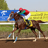 Horse Racing Jebel Ali, Dubai 14th November 2014