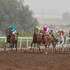 Horse Racing Jebel Ali, Dubai, United Arab Emirates 20th Febrary 2015