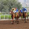 Horse Racing Jebel Ali, Dubai, United Arab Emirates 20th March 2015