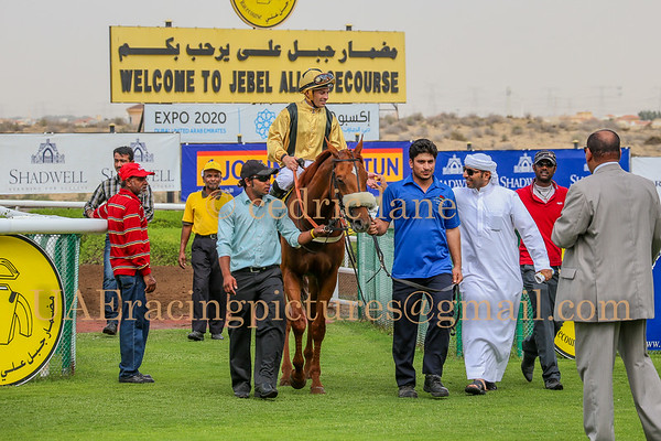 Horse Racing Jebel Ali, Dubai, United Arab Emirates 20th March 2015