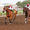 Horse Racing Jebel Ali, Dubai, United Arab Emirates 28th November 2014