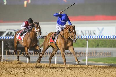 2014 - 2015 Horse Racing Season