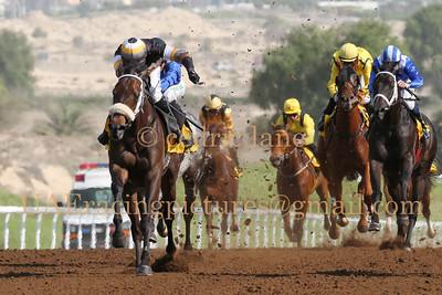 'Jebel Ali Horse Race Meeting, Dubai 31st Oct 2014.