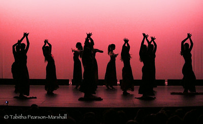 2014 AE recital showcase 1