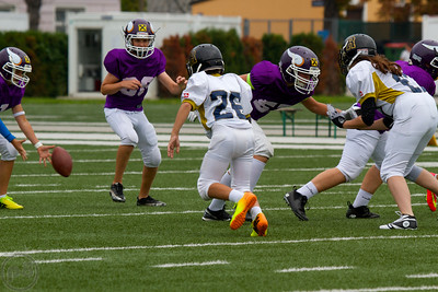 2014; AFBÖ; American Football; Mödling Rangers; Vienna Vikings; U13; Youth
