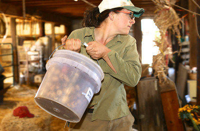 Sarah does much of the heavy lifting but also receives help from farm-mates Marisol Lopez and Tessa Fojut, who live on the farm but work off site.