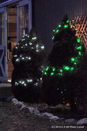 2014.12.20 Christmas Show