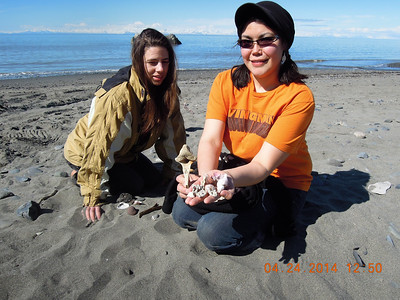 Shells for Milo