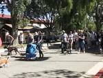 10-04-2014 St. Francis Day- Blessing of tne Animals