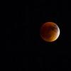 2015 Super Moon Eclipse