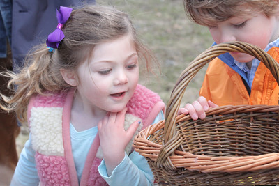IMG_0120 JPG chloe and finn costello compare baskets