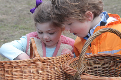 IMG_0123 JPG chloe and finn costello compare baskets