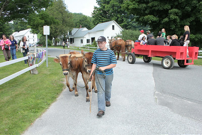IMG_5066 JPG tim rogers of plymouth leads team of young oxen down center of plymouth notch