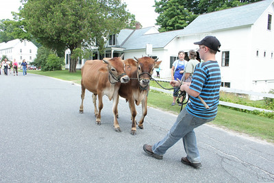 IMG_5062 JPG tim rogers of plymouth leads young team of oxen in front of coolidge home,  he is grandson of fred depaul, was using the day to get oxen used to people