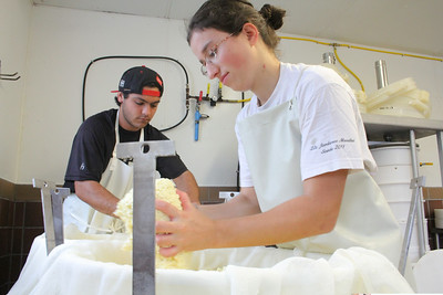 IMG_4782 JPG putnam and vouillot press curds into molds