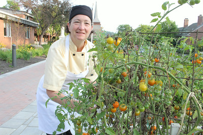 Donna Miles picking tomatos and basiIMG_1348