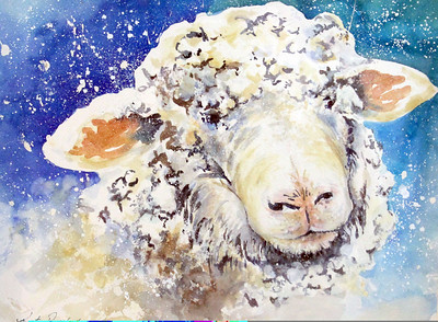 IMG_5636 Winter Lamb