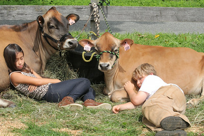 IMG_1801 JPG keanolani thompson meahi,9, of white river and her cow Velvet and alex gray,10, of hartland with Opal