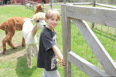 IMG_5109 JPG conner hughes,8, who lives on the farm, welcomes vistiors