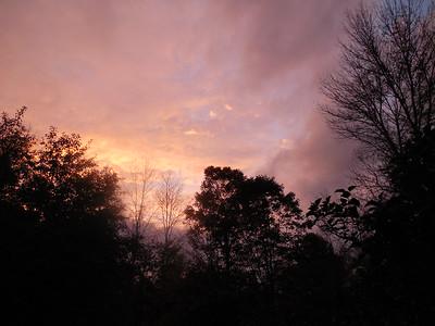 Deborah Gravel, Woodstock in her yard at dusk