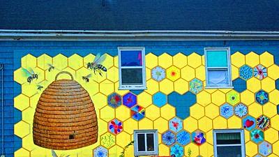 Bee Hive Mural