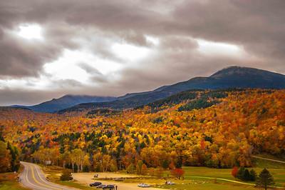 Mt Washington Foilage