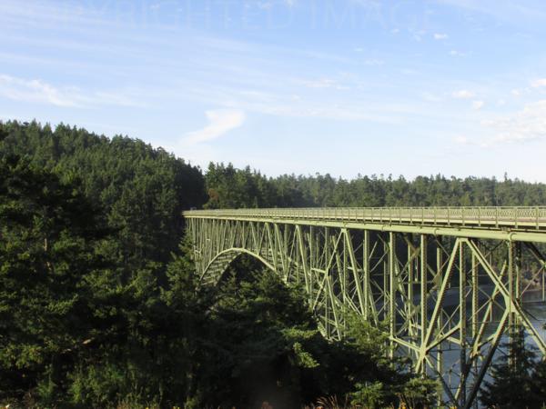 Amazing Bridge