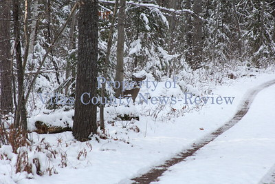 Winter arrives in the North Woods