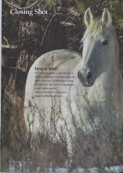 Western Horse Review - Full Last Page - Mar. Issue