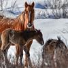 Starr & Mom
