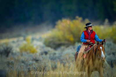 2014 Z Bar T Ranch - Dell, Montana