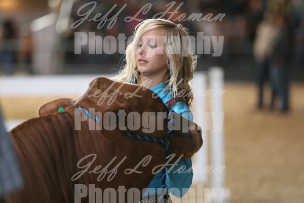 2014 MS State Fair Livestock Show