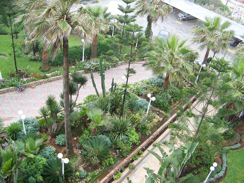 0004 - View of Hotel Grounds from Room at Le Grand Bleu Val D Anfa Hotel - Casablanca Morocco.JPG