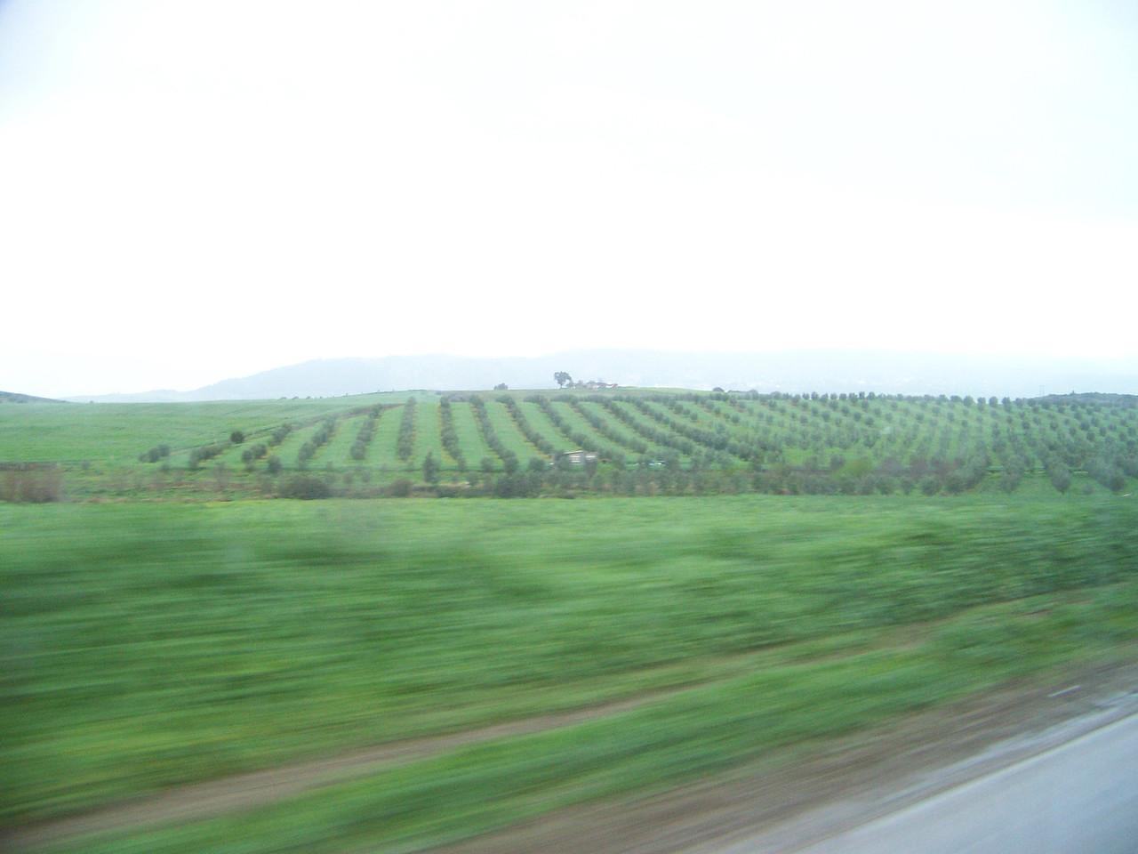 0045 - Countryside on Hwy N13 Between Meknes and Volubilis - Morocco.JPG