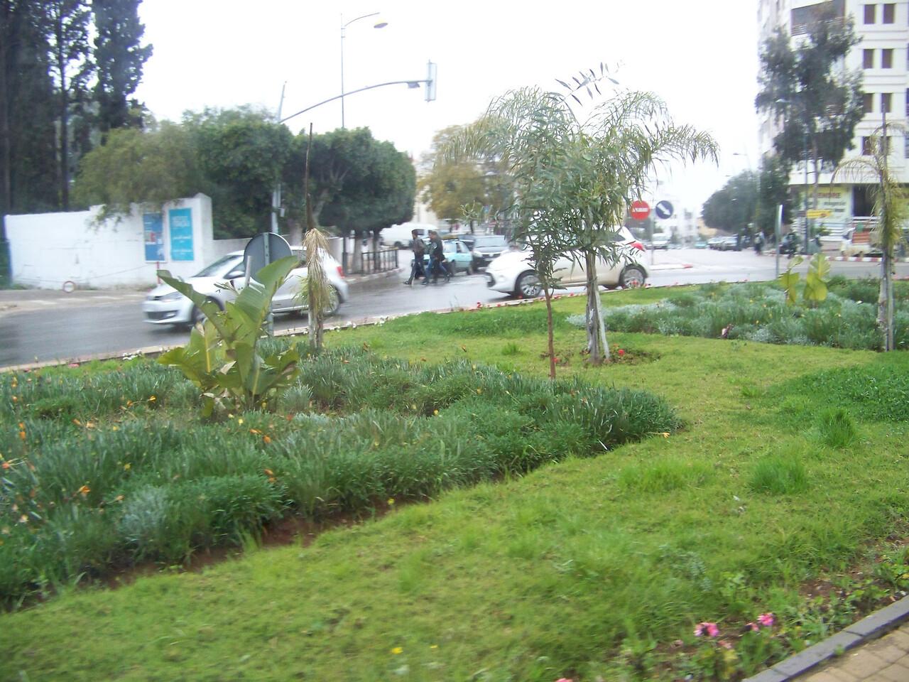 0043 - Streets of Modern Section of Meknes - Meknes Morocco.JPG