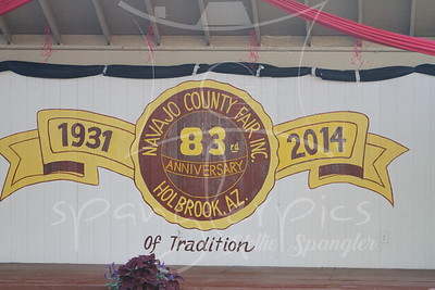 2014 Navajo County Fair