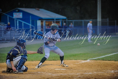Baseball--MJ--SfvsMeth--42016-447