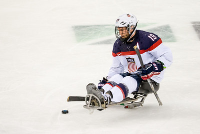 3-15-2014 Sled Hockey