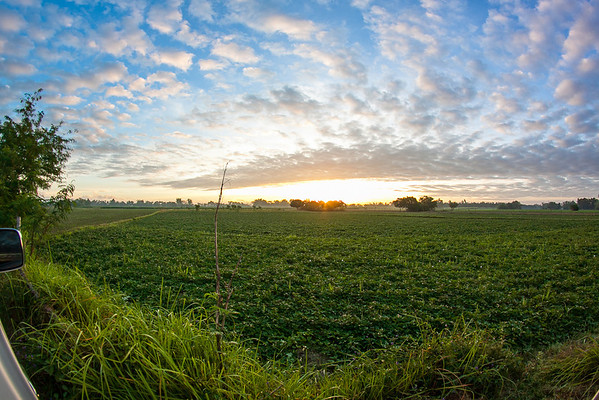 Sunrise over farmland, Tarlac