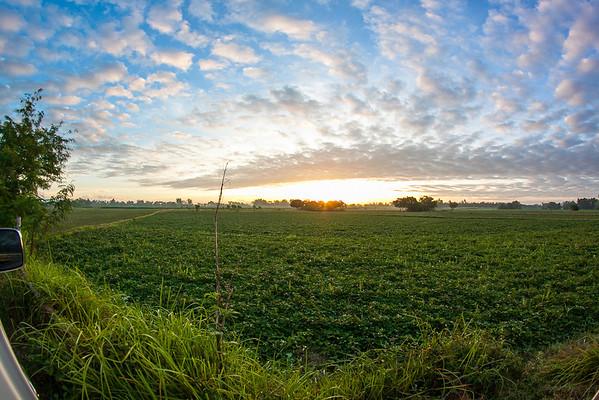 Sunrise over farmland, Tarlac