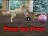 Pimp My Pony Horse Soccer